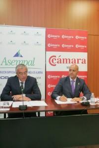 RG151013- ASEMPAL Y CAMARA DE COMERCIO EXPONEN HOJA DE RUTA ACCIONES PRIORITARIAS JUNTA DE ANDALUCIA