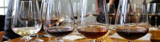 Copas de vino en cata
