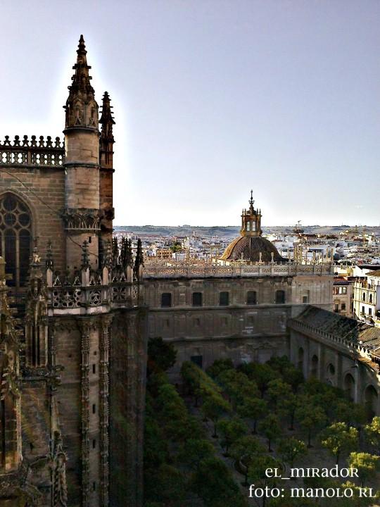 Patio de los naranjos, catedral de Sevilla