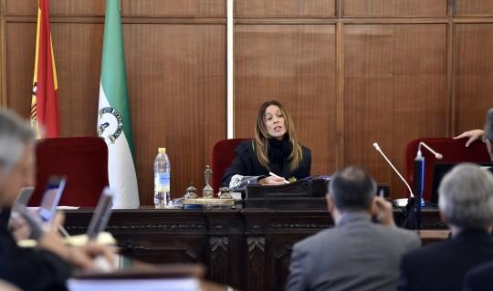 La juez de Mercasevilla, Yolanda Sánchez Gucema.