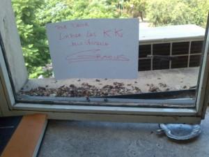 Los funcionarios habían pedido que se limpiaran los excrementos de las ventanas