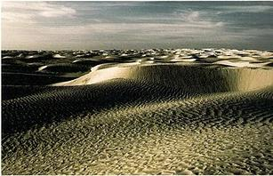 elogio del desierto 2
