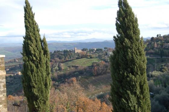 Campos de Toscana, vistos desde Montalcino