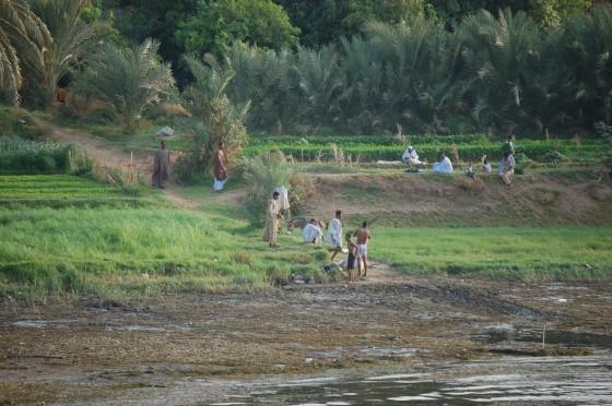 La vida en la orilla del Nilo
