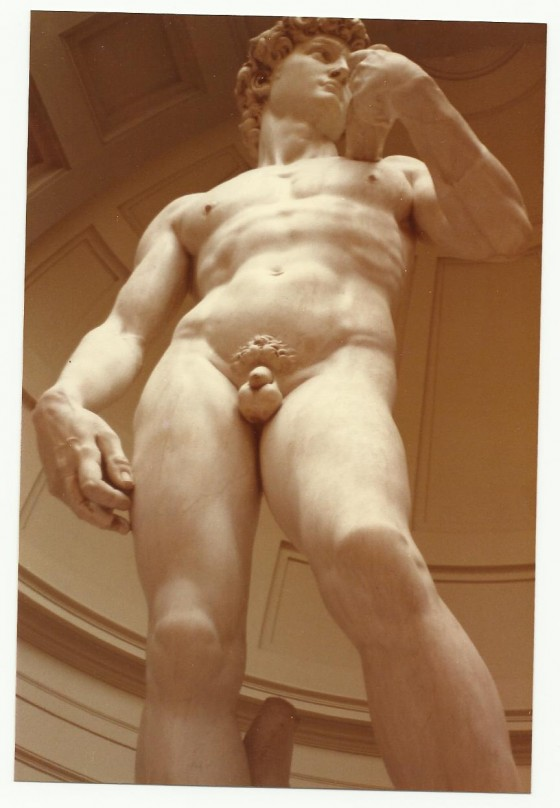 El imponente David de Miguel Ángel. No tengo fotos de los Esclavos.
