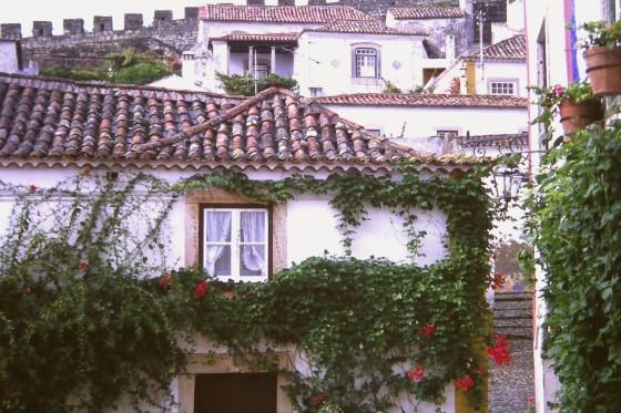 Características casas y tejados.
