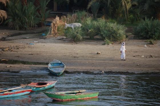 Vida en las orillas del Nilo.