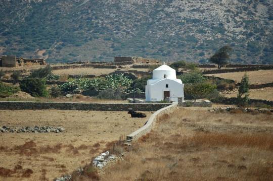 El campo de Naxos.