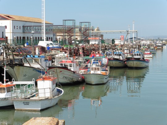 Barcos pesqueros en el muelle de Isla Cristina.