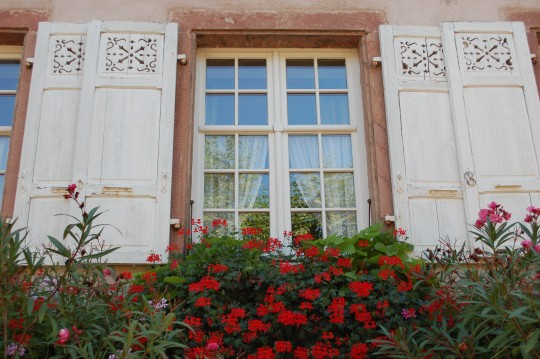 Ventanas y calles floridas de Bergheim.