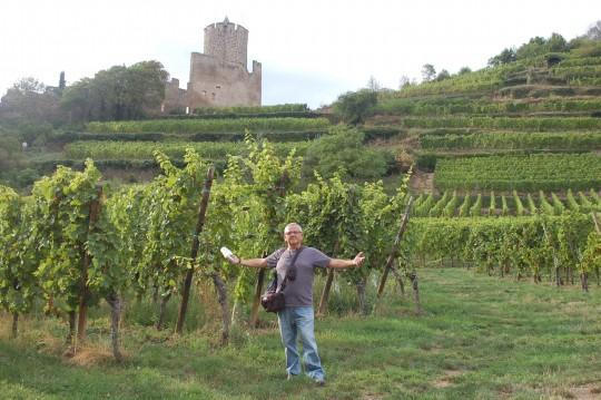 El esplendor de las viñas bajo el castillo de Kaysersberg.