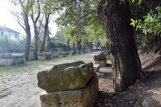 El paseo funerario de los Alyscamps.