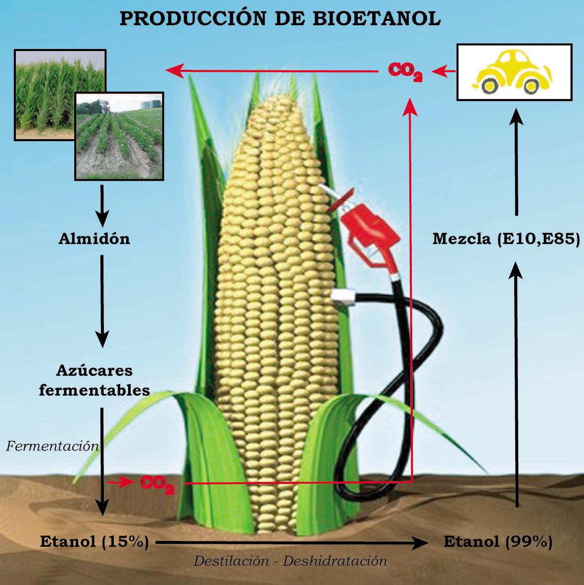 ¿Quién da la vez? » Archivo » Abengoa: el biocombustible