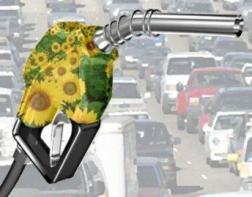 bioetanol2.jpg