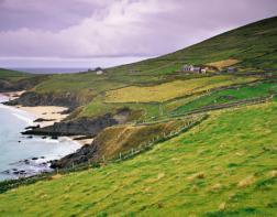green-ireland-lg.jpg